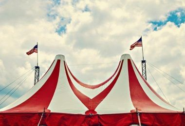 Pole Dancing and its relation to the Circus